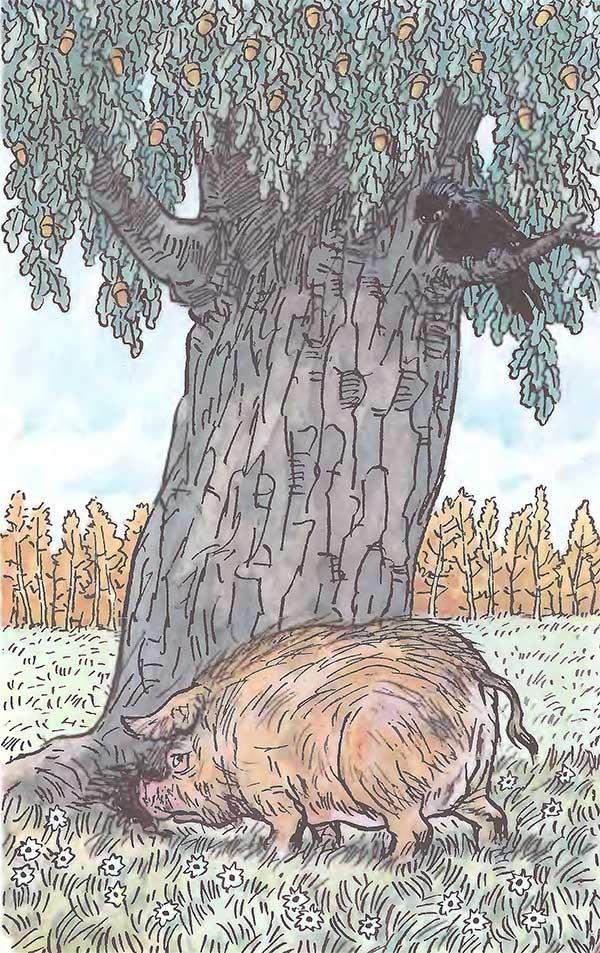 подходит иллюстрация свинья под дубом рисунки корпоративных праздников, презентаций